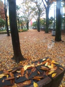 otsukakubomachipark 20141126