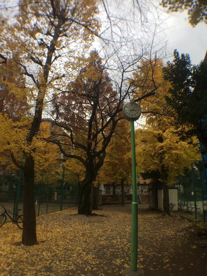 茗荷谷界隈秋の散策写真