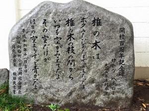20150826kohinata4