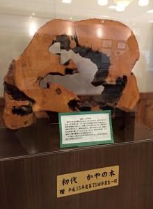 20150831kubomachi7